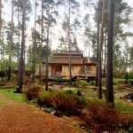 Покраска деревянного дома в Сосново - до начала работ