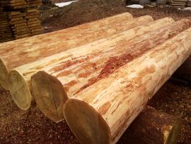 Окоренное бревно - лучший материал для возведения деревянных домов, т.к. при обработке ствола происходит наименьшее воздействие на наиболее богатые смолой наружные слои дерева. В результате чего, срубы домов из окоренного бревна наиболее стойкие к грибкам и бактериям.